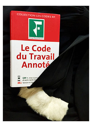 LM Avocats